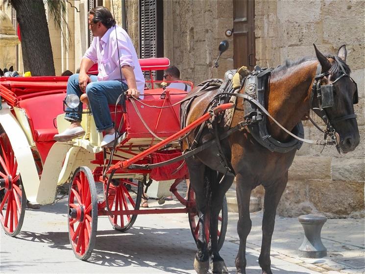 hästochvagn