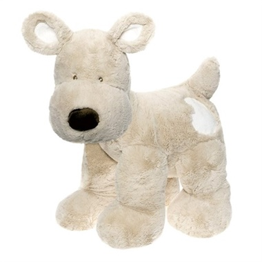 Teddy Cream Hund XL omslag